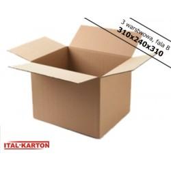 Karton 310x240x310